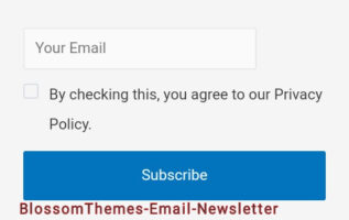 Blossom-theme-email-newsletter-plugin
